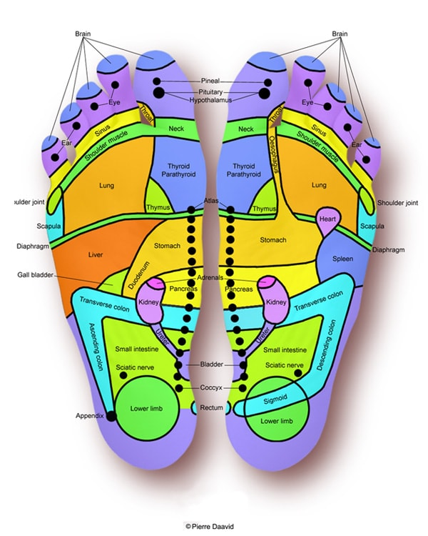 Feet Reflex points
