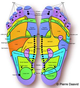 Feet Reflex points
